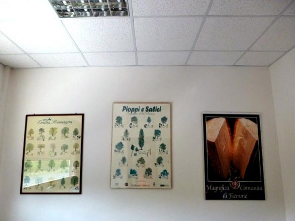 falegnameria-busini-giuseppe-e-c-snc-mobili-su-misura-Parma